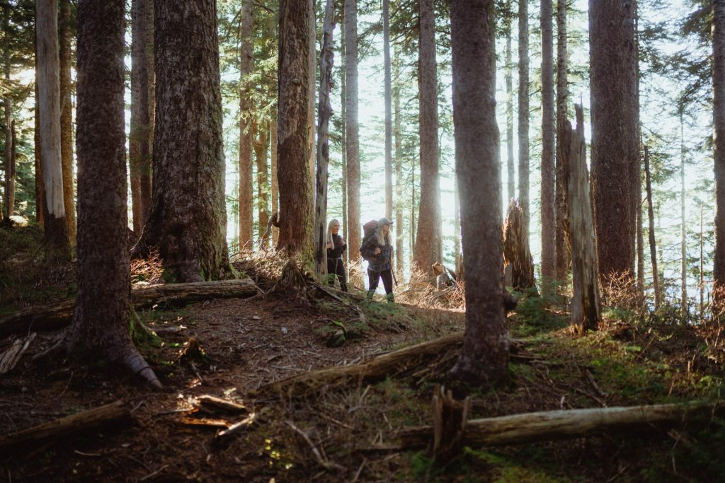Two women hiking through a North Shore Forest in Fall